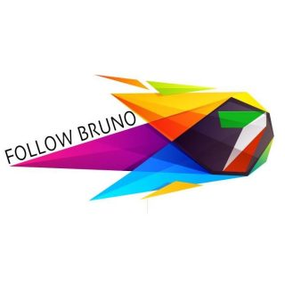 follow bruno logo